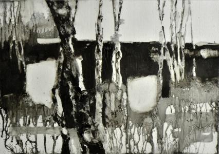 bosco 7